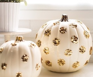 pumpkin, fall, and white image