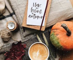 autumn, seasons, and autumn is coming image