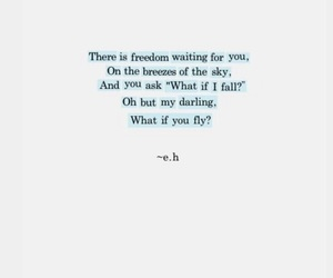 quotes, freedom, and fly image