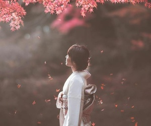 asia, autumn, and flowers image