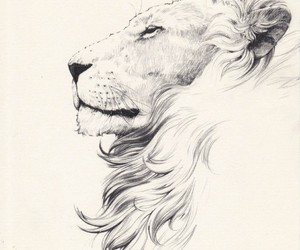 lion, profile, and tattoo image
