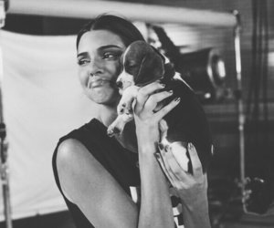 kendall jenner, dog, and Kendall image