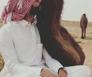 arab, camel, and men image