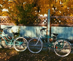 autumn, basket, and bicycle image