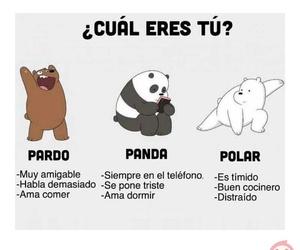 asia, invierno, and panda image