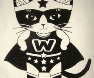 wonderwoman cat cute image