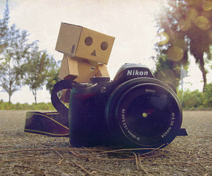 nikon, cute, and camera image
