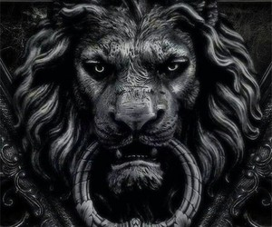 lion, black, and door image