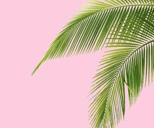 art, green, and minimalism image