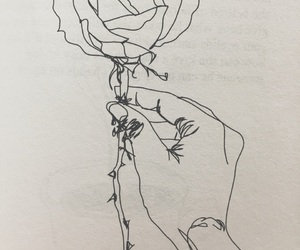 drawing, love it, and rose image