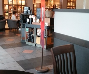 coffee, barnes and noble, and starbucks image