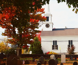 autumn, cemetery, and church image