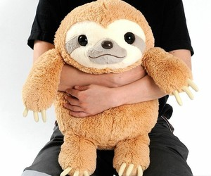 kawaii, plushie, and sloth image