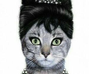 cat and audrey hepburn image