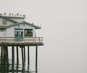 house, sea, and vintage image