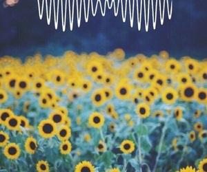 flowers, arctic monkeys, and sunflower image