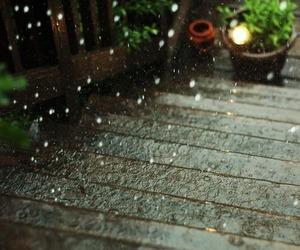 rain and autumn image