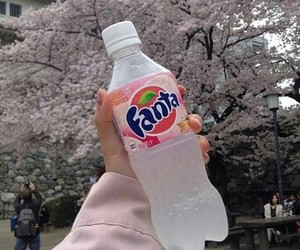 drink, fanta, and hand image