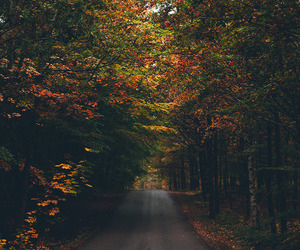 autumn, fall, and adventure image