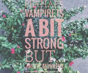 arctic, vampire, and humbug image