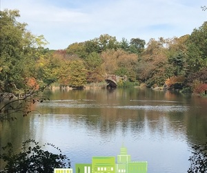 autumn and Central Park image