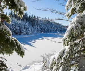 canada, landscape, and snow image