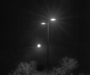 b&w, street lamp, and dark image