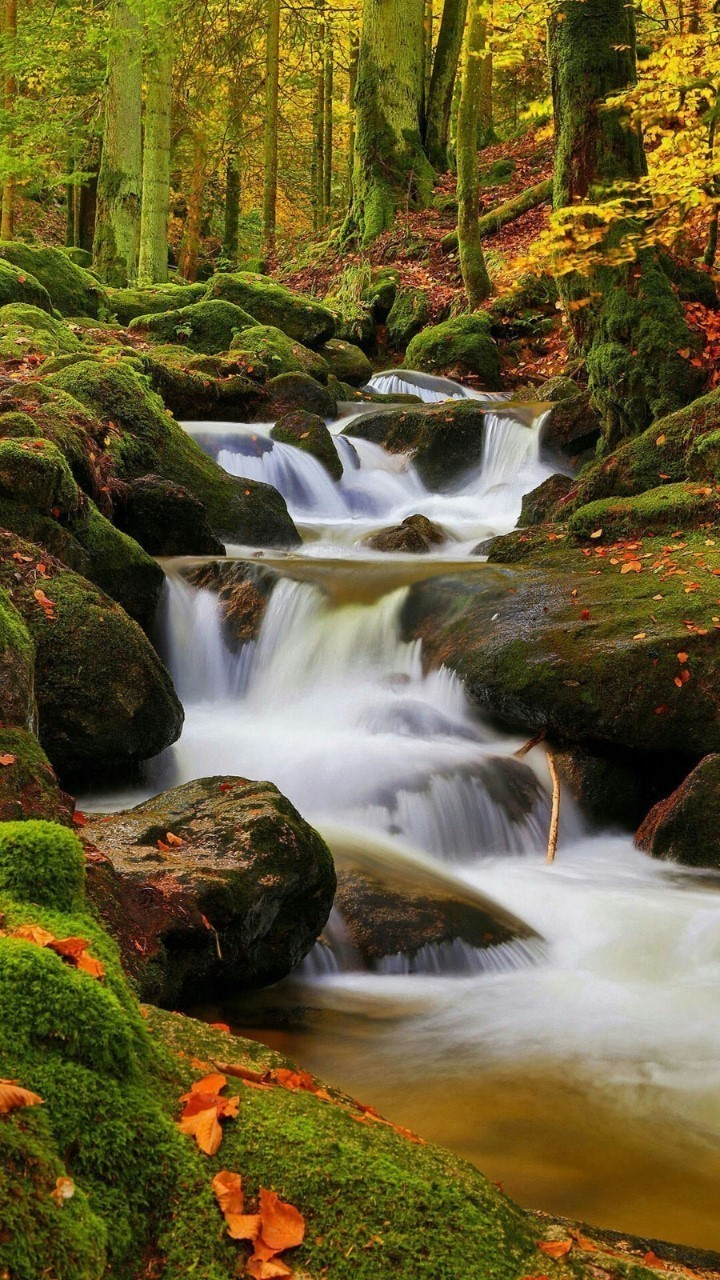 article, nature, and water image