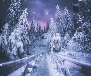 winter, snow, and stars image