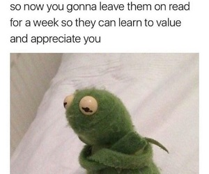funny, kermit, and lol image
