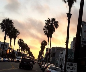 background, la, and palm trees image