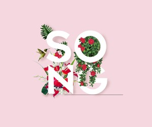 flowers, simple, and song image