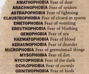 fear, phobia, and quotes image