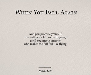 quotes, fall, and fly image