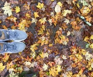 addidas, fall, and november image
