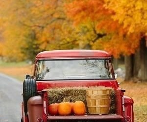 autumn, nature, and time image