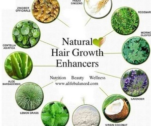 hair, healthy, and natural image