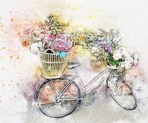 amazing, bycicle, and cute image
