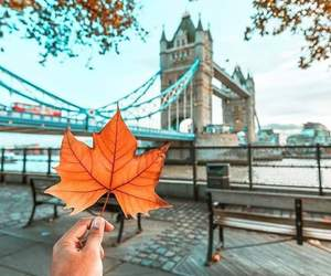 autumn and london image