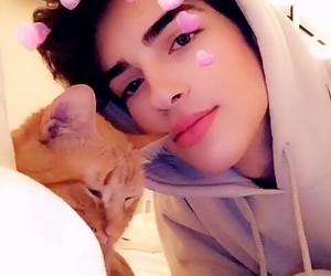 cat, cute boys, and jawline image