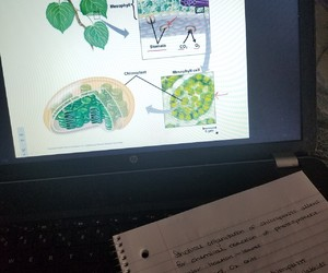 biology, notes, and science image