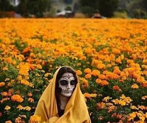 DIA, flores, and muertos image