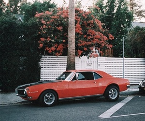 car, flowers, and indie image