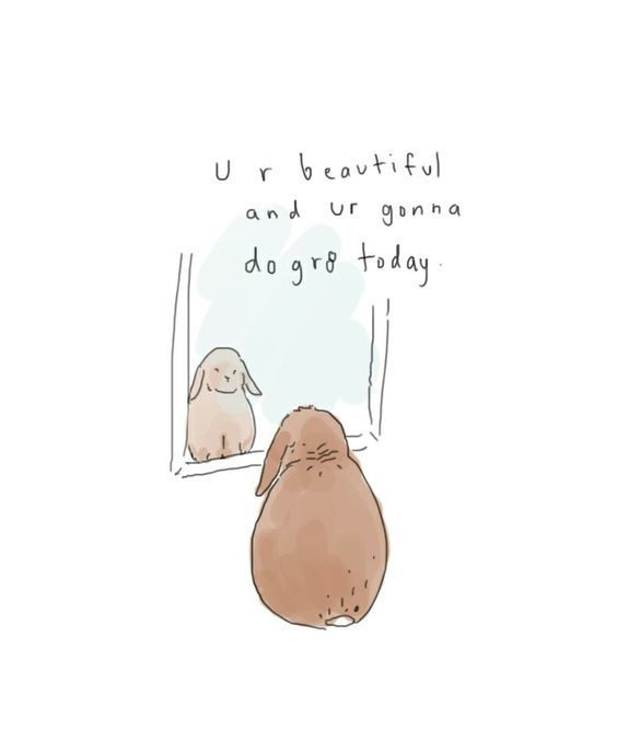 quotes, bunny, and motivation image