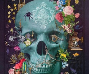 skull, colors, and skeleton image