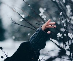 winter, snow, and hand image
