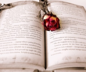 book, easel, and rose image