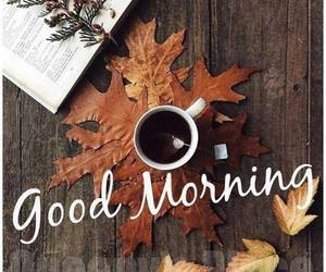 autumn, fall, and good morning image