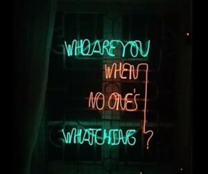 lights, neon, and whithefuture image