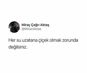alıntı, türkçe sözler, and twitter paylaşımları image